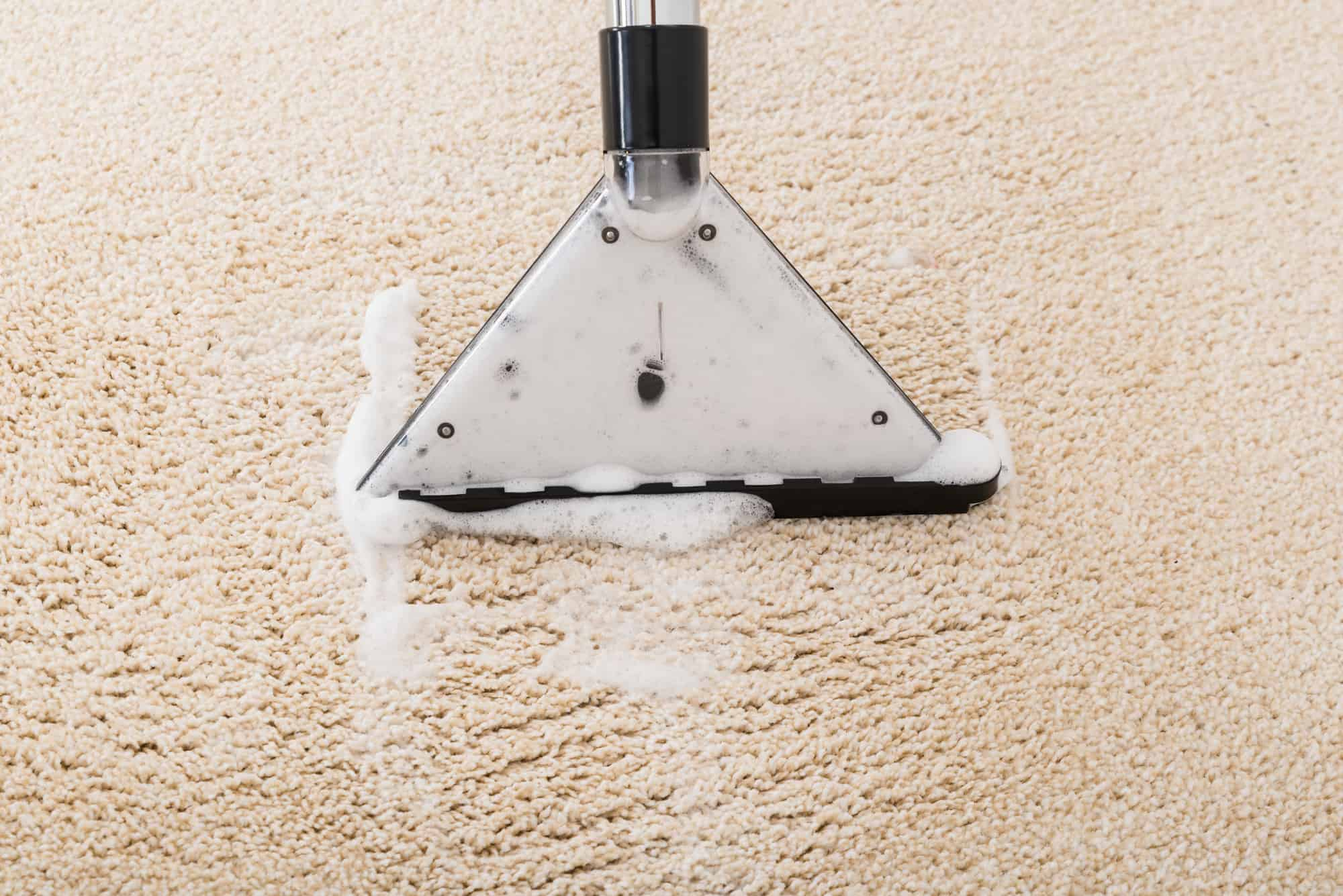 carpet cleaners for business
